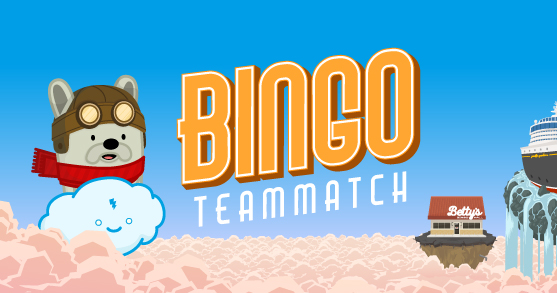 Bingo Teammatch